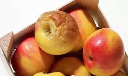 把水果坏的地方切掉,剩下的部分还能吃吗?